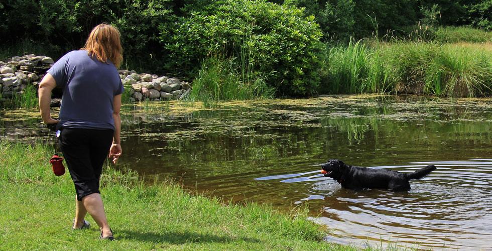 Hundepark mit Badesee